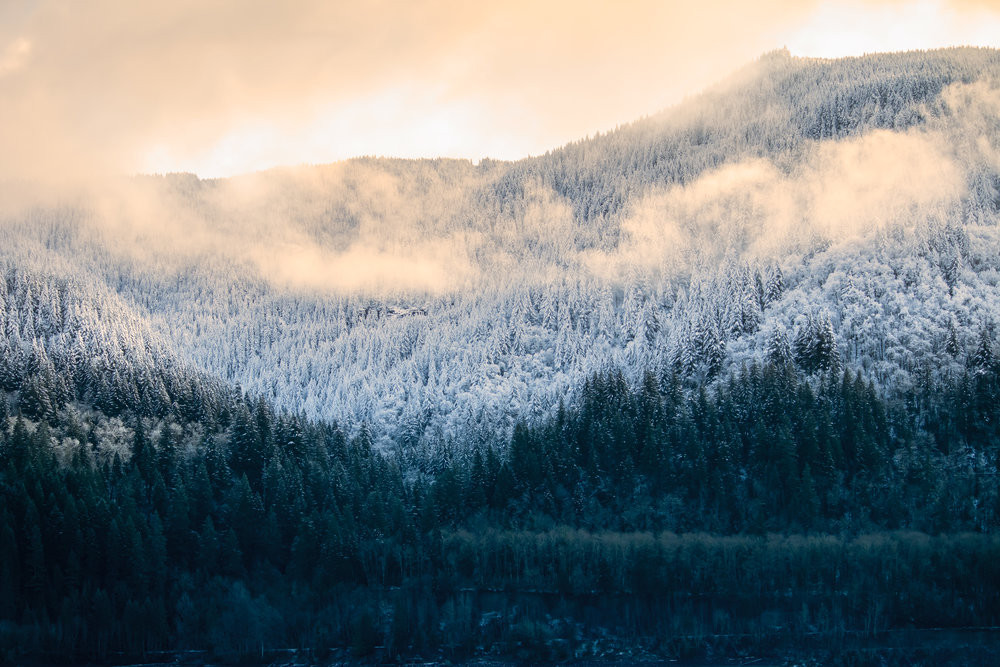 Snow-Landscape-Saved-for-WEb-not-so-bright.jpg