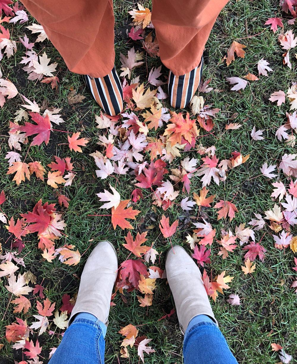 fall #4.jpg