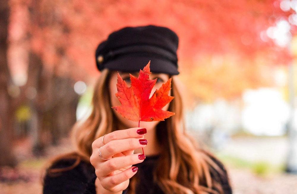 fall #58.jpg