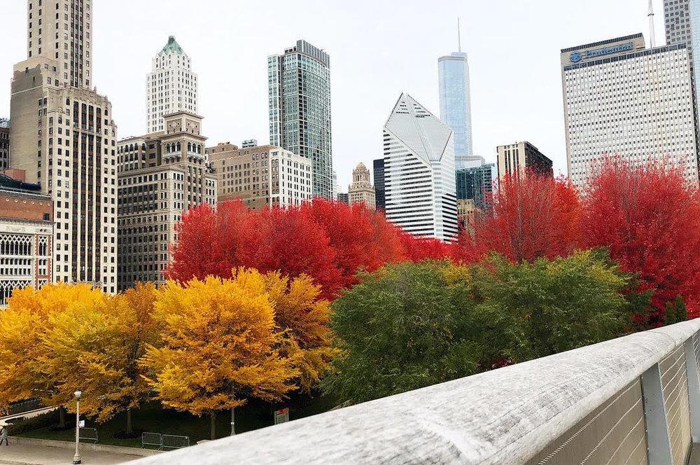 fall #64.jpg