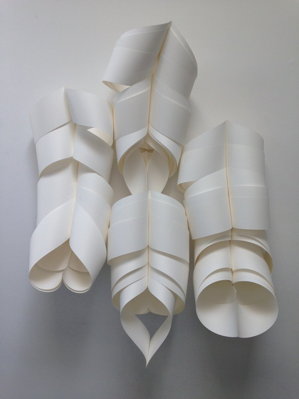 spines.JPG
