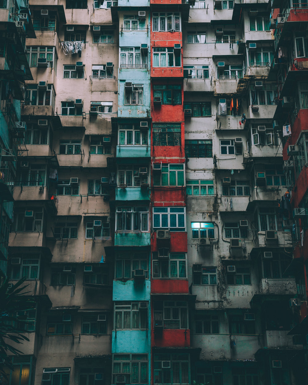 Quarry Bay Close Up SS.jpg