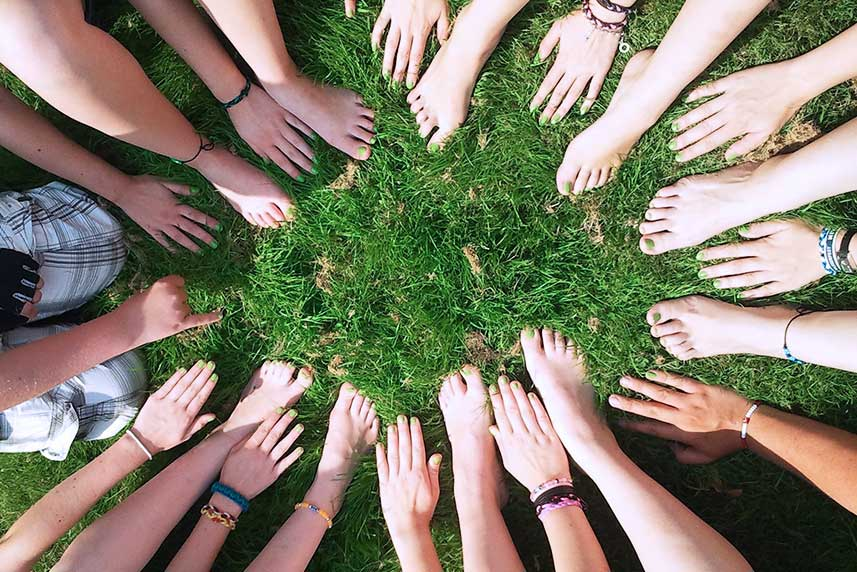 hand-tree-grass-group-people-plant-954284-pxhere.com-iloveimg-compressed.jpg
