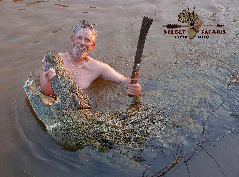 Krokodil 4.png