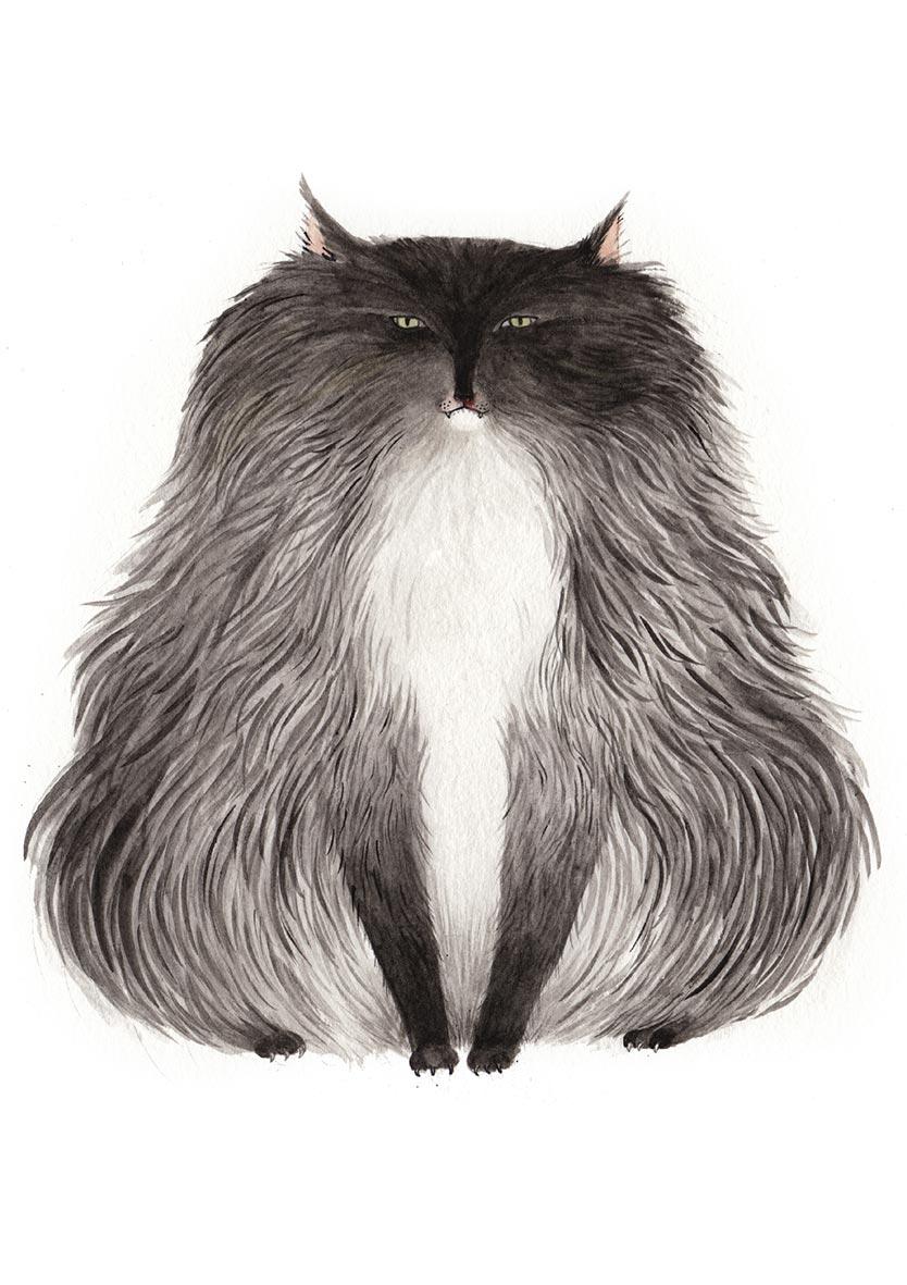 _0006_Zosienka_Big-Angry-Cat.jpg