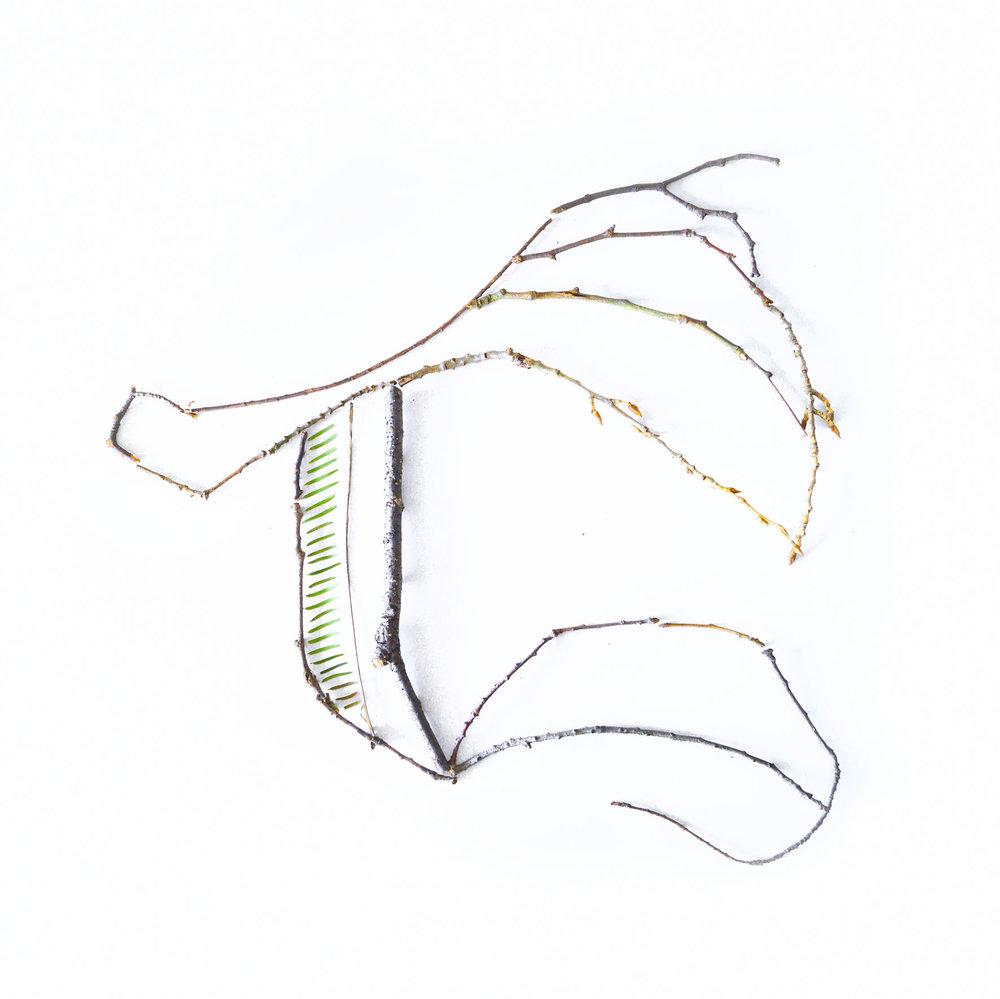 T - Kalligrafie van takken en twijgjes