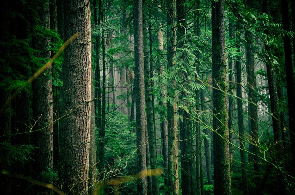 belianske-tatry-fotogaleria-sample-11.jpg