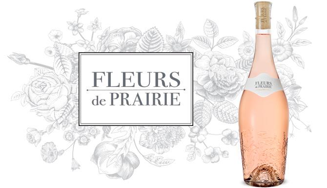 fleurs de prairie.jpg