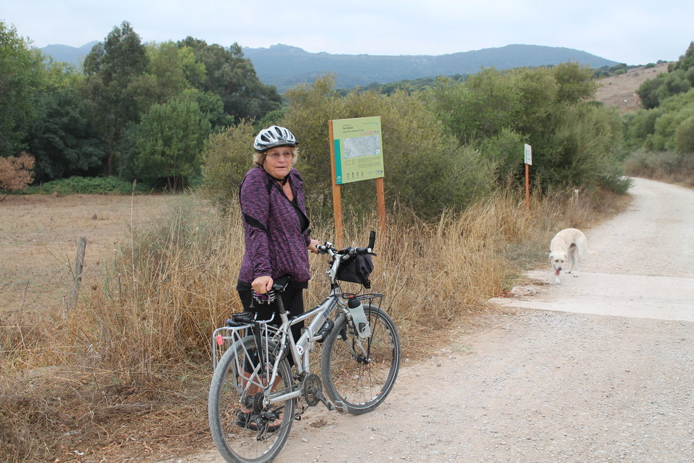 Cycling is a great way to stay active if you have arthritis - Who Dares Slims boot camp customer Mandy tells all