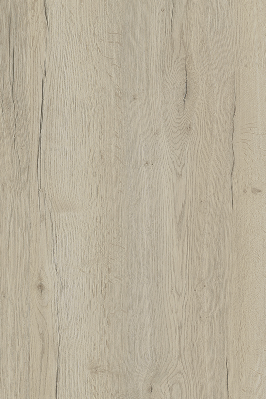 H1176 White Halifax Oak