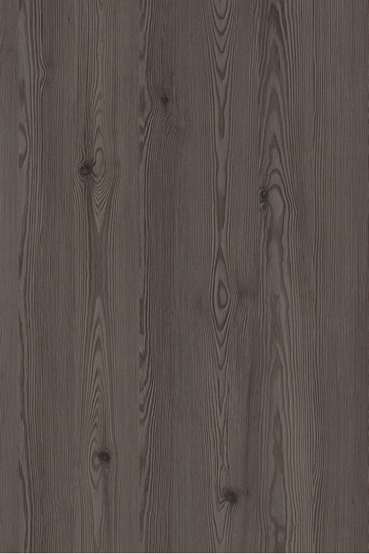 H3406 Anthracite Mountain Larch