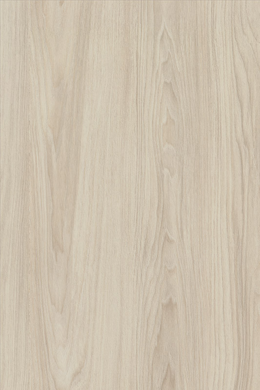 H3760 White Cape Elm