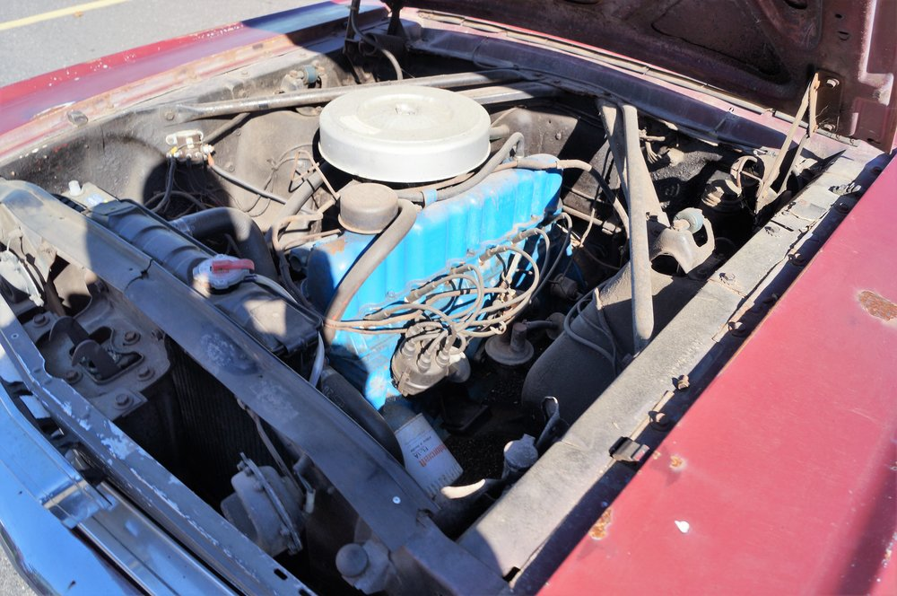 1966 Mustang -- DC 385.jpg