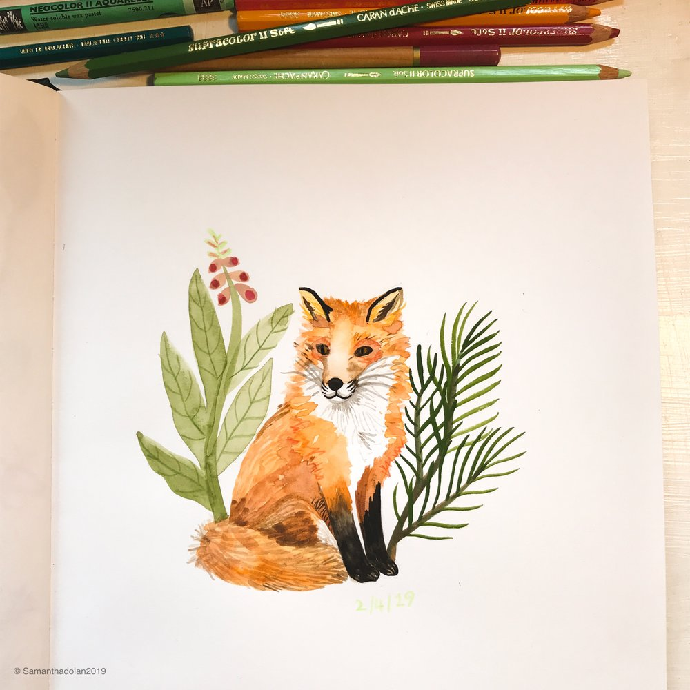Wee red fox by Samantha Dolan