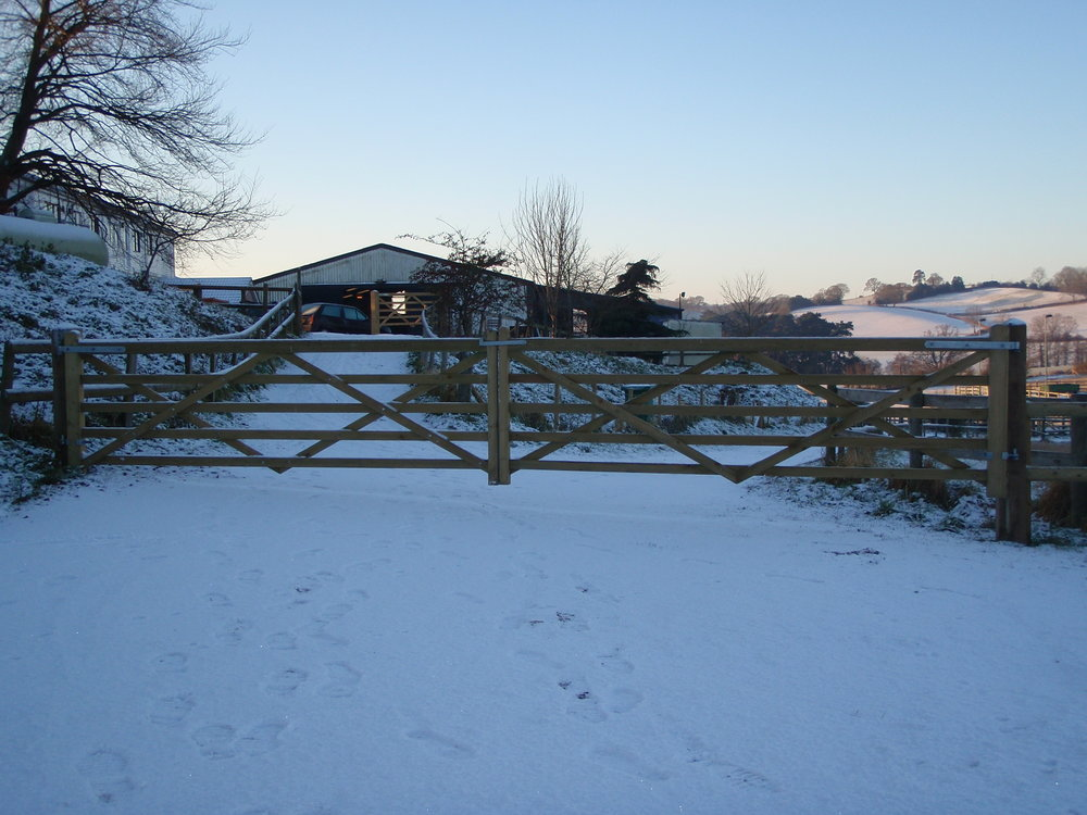 Double field gate - Valehead Farm