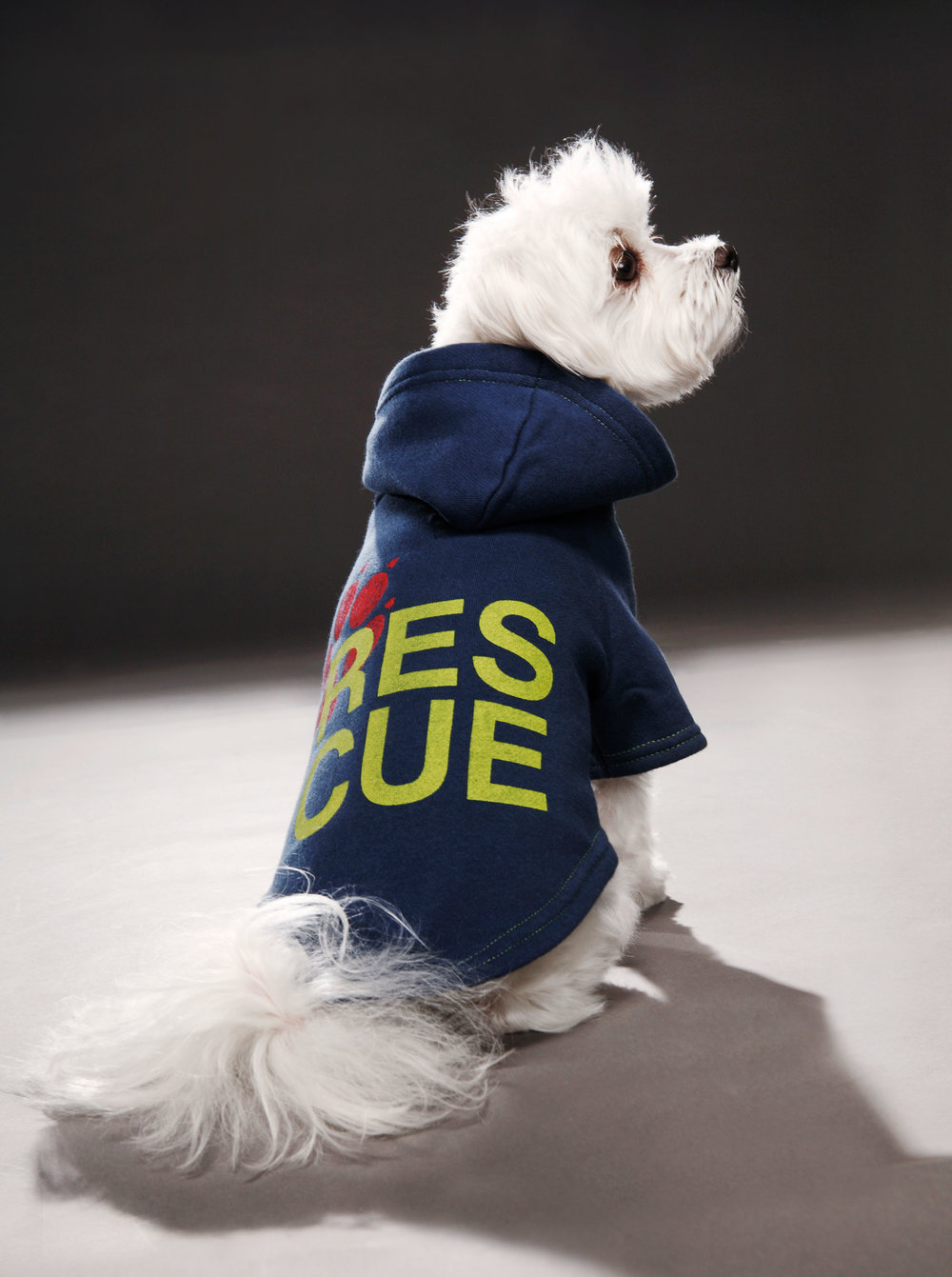 rescueblueHD.jpg