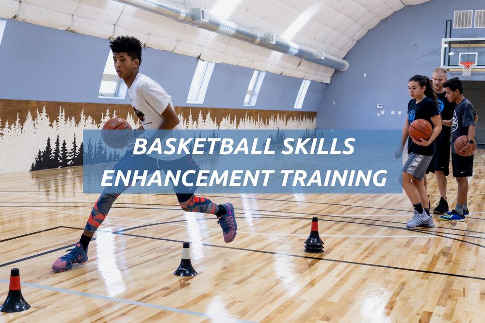 PTAP Website Home- Services graphics Basketball.jpg
