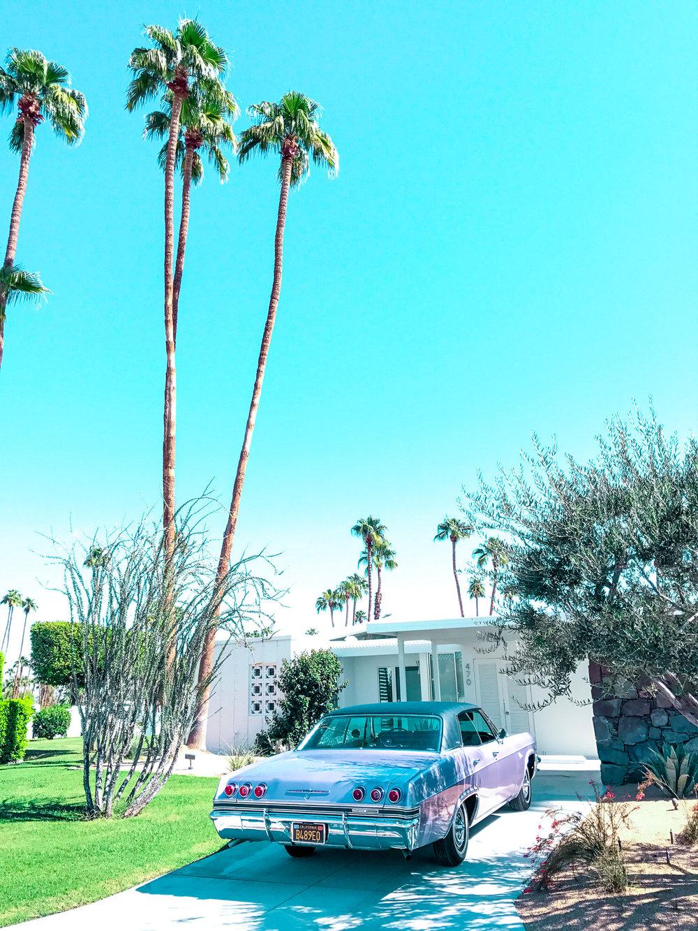 Palm Springs32.jpg