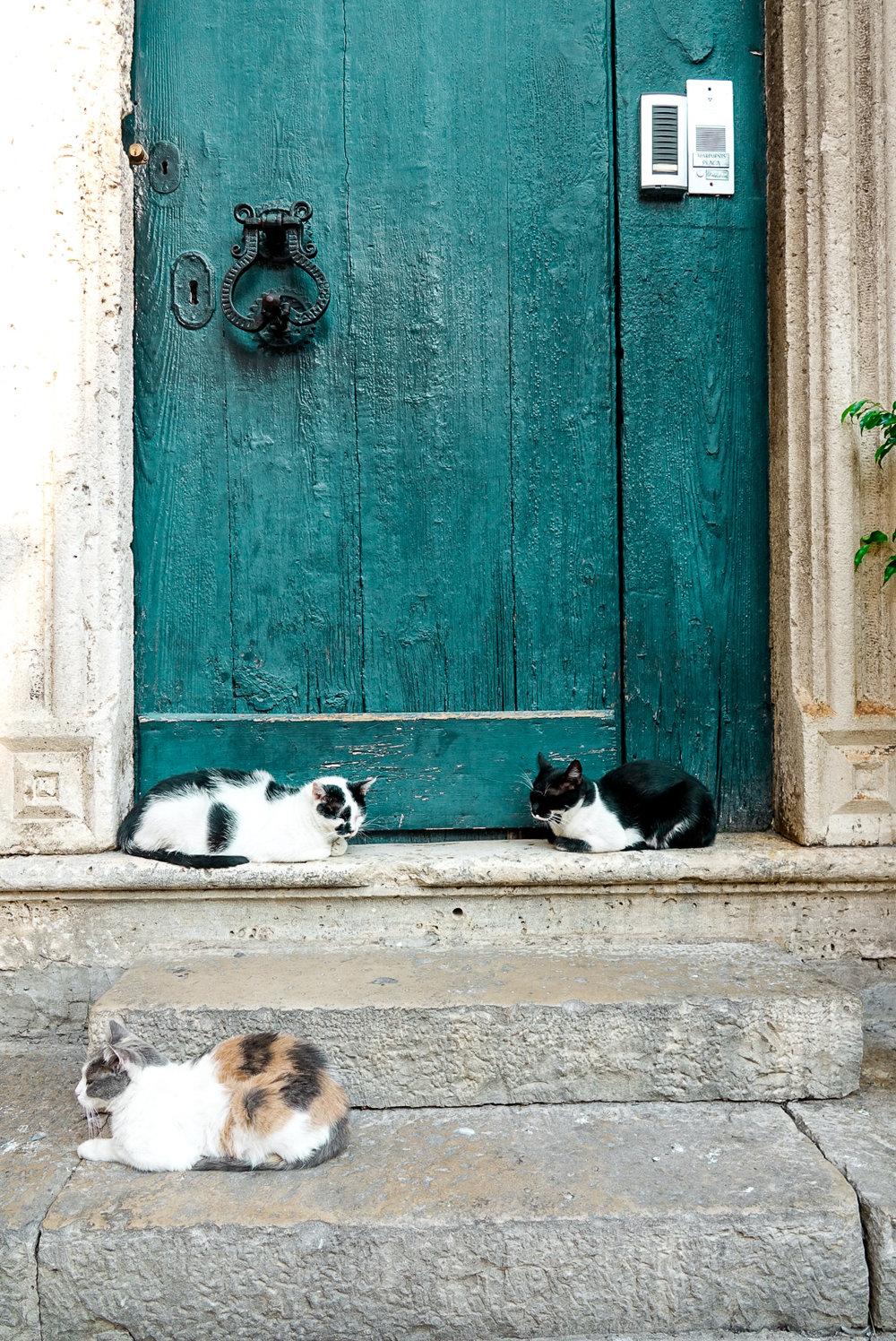 Dubrovnik42.jpg