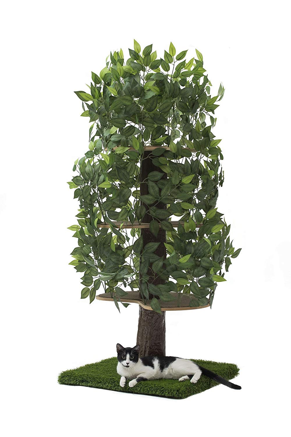 Wait is that a tree? - This is great for any indoor cat that wants to pretend it's an outdoor cat. It's also great for any cat that's sneaky AF and wants to hide everywhere