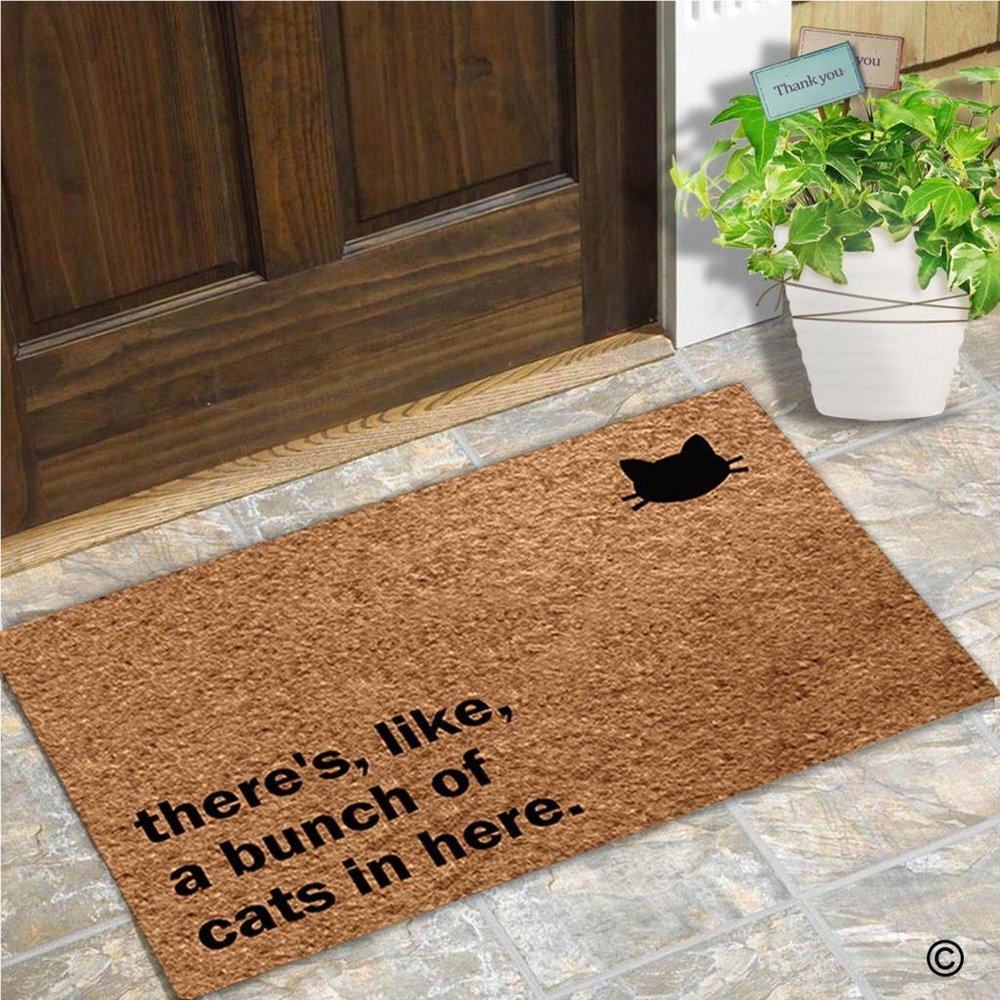 Subtle but effective door mat - Haven't told your first date you have cats? Let the doormat do the talking for you!
