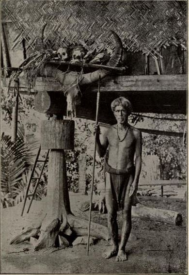 Ifugao warrior showing the heads he has taken from his enemies. From  The Head Hunters of Northern Luzon  (1912) by Cornelis Wilcox.