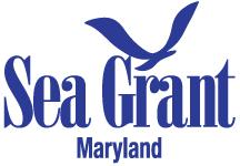 MDSG_logo.jpg