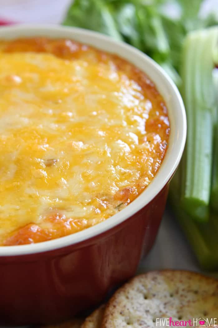 Buffalo-Chicken-Dip-Recipe-Appetizer-by-Five-Heart-Home_700pxDish.jpg