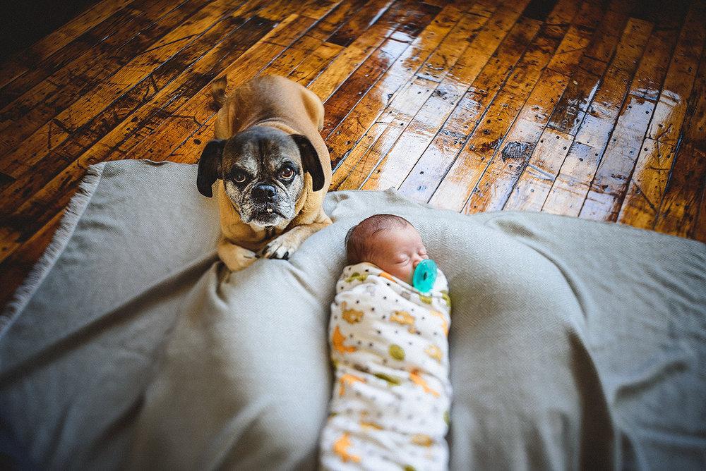 jmp_newborn_005.jpg