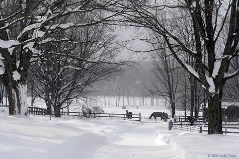 winterfarm.jpg