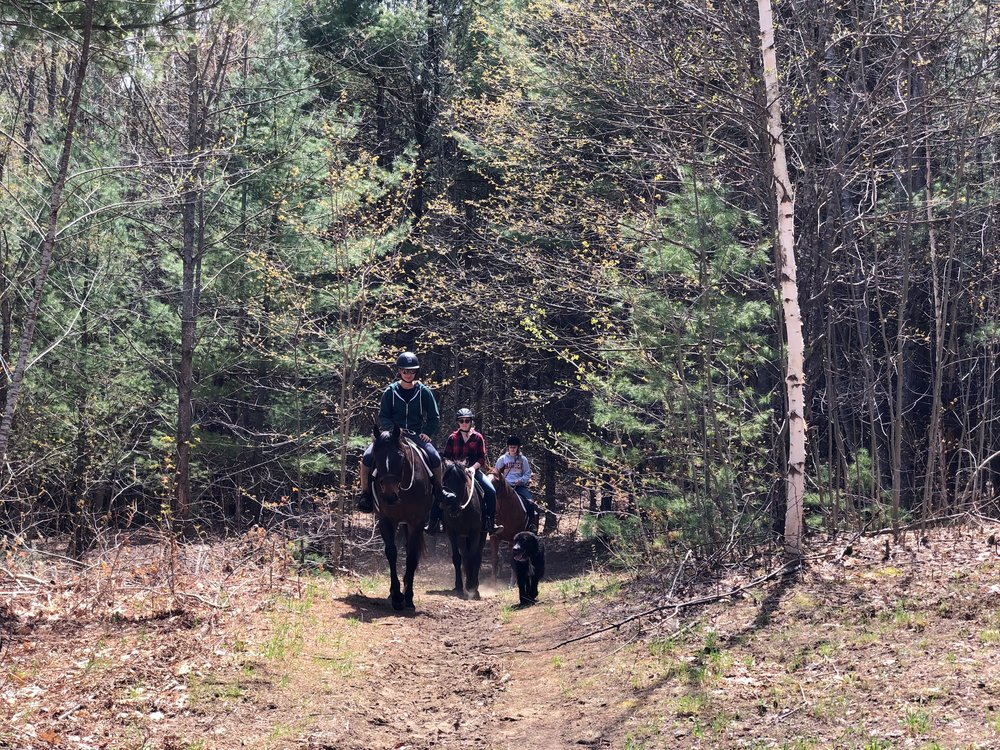 Trail ride Glen Oro Oro-Medonte 3