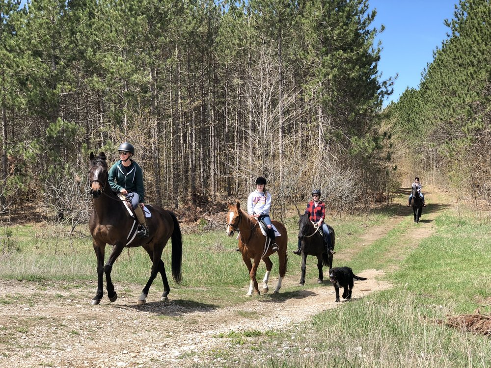 Trail ride Glen oro 6 Oro-Medonte