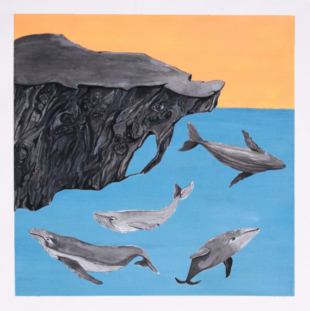 whale1_web.jpg