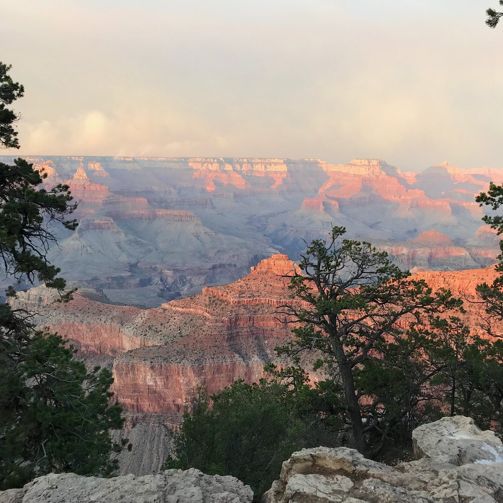 View of the canyon from the Rim Trail