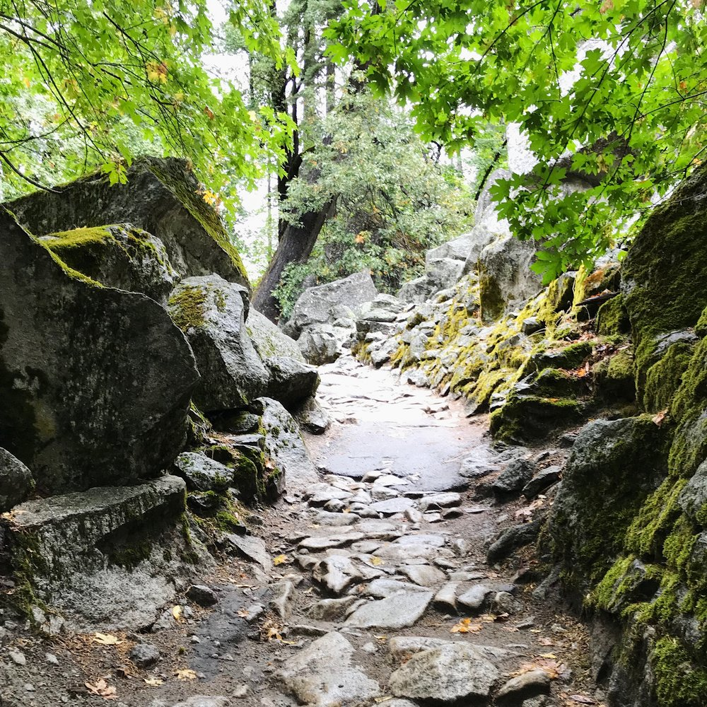 Trail-to-Yosemite-Village-1.JPG