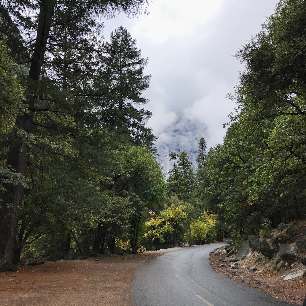 Trail-to-Yosemite-Village-2.JPG