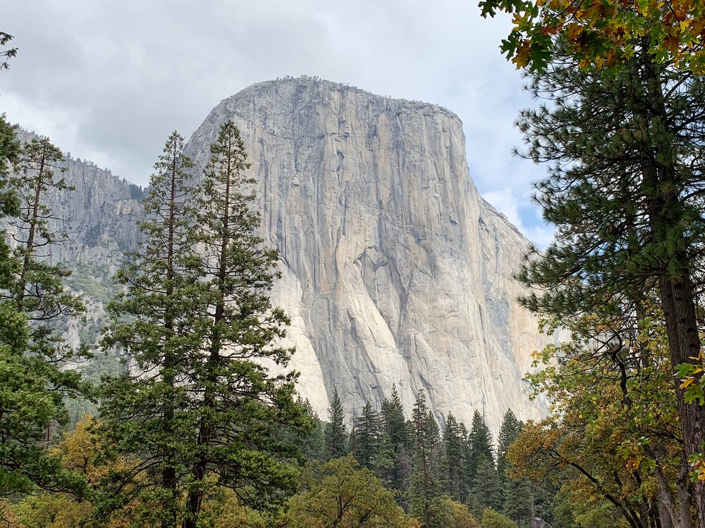 ValleyFloorTour-3ElCapitan.JPG