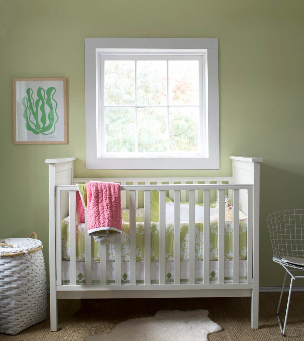 Hibiscus_Nursery.jpg