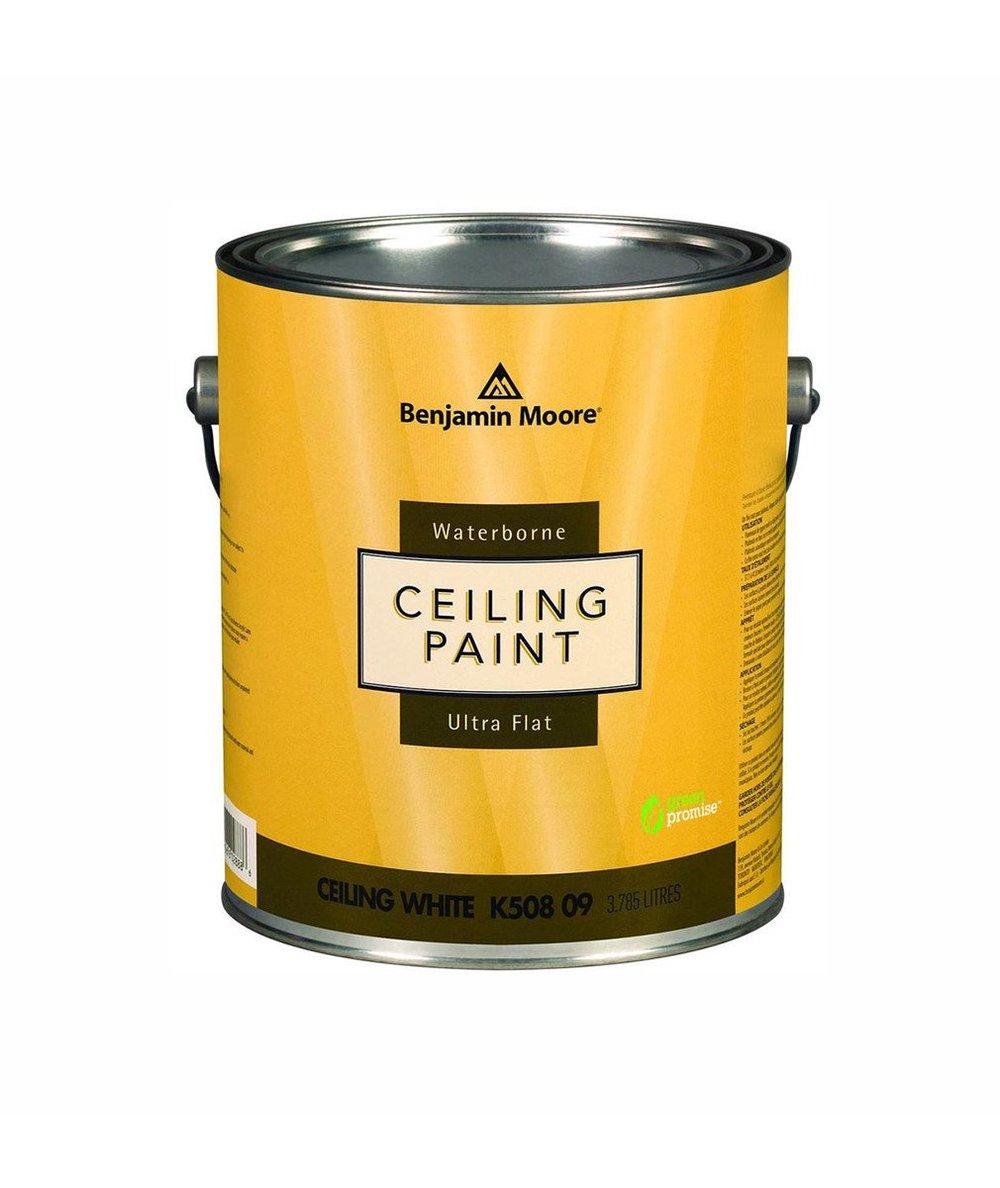 Ceiling_3e0b9b5d-c8ca-48f4-bfe5-b2830ae6602c_2000x.jpg
