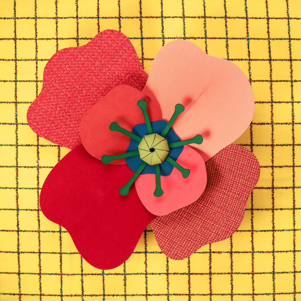heavyeyes_knoll_flower2.jpg