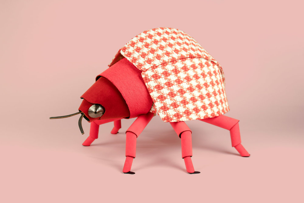 heavyeyes_knoll_beetle4.jpg