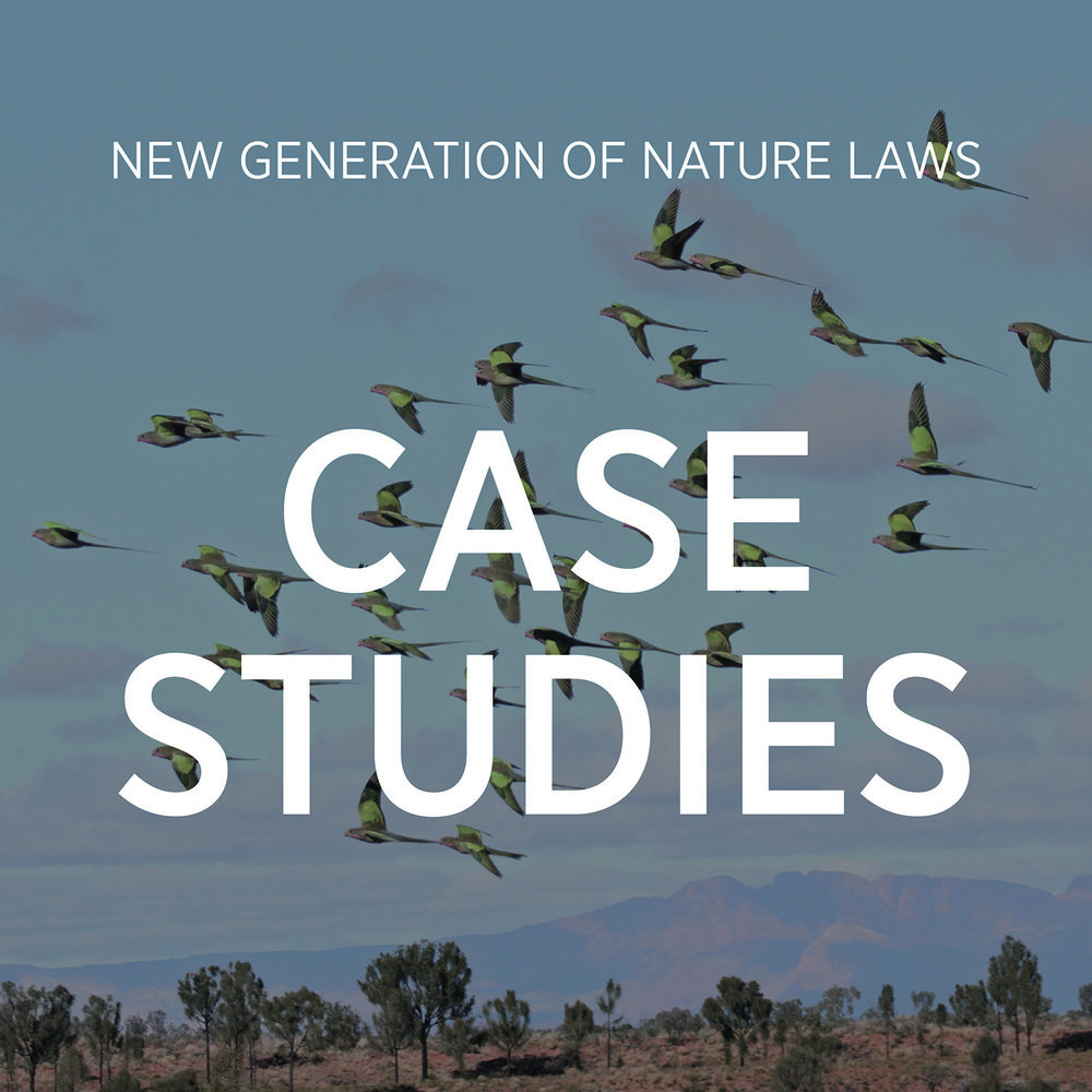 Have a read of some case studies which demonstrate how the current system isn't up to scratch, and how the new nature laws we're proposing will provide solutions to some of the biggest threats facing Australia's unique and beautiful birdlife.