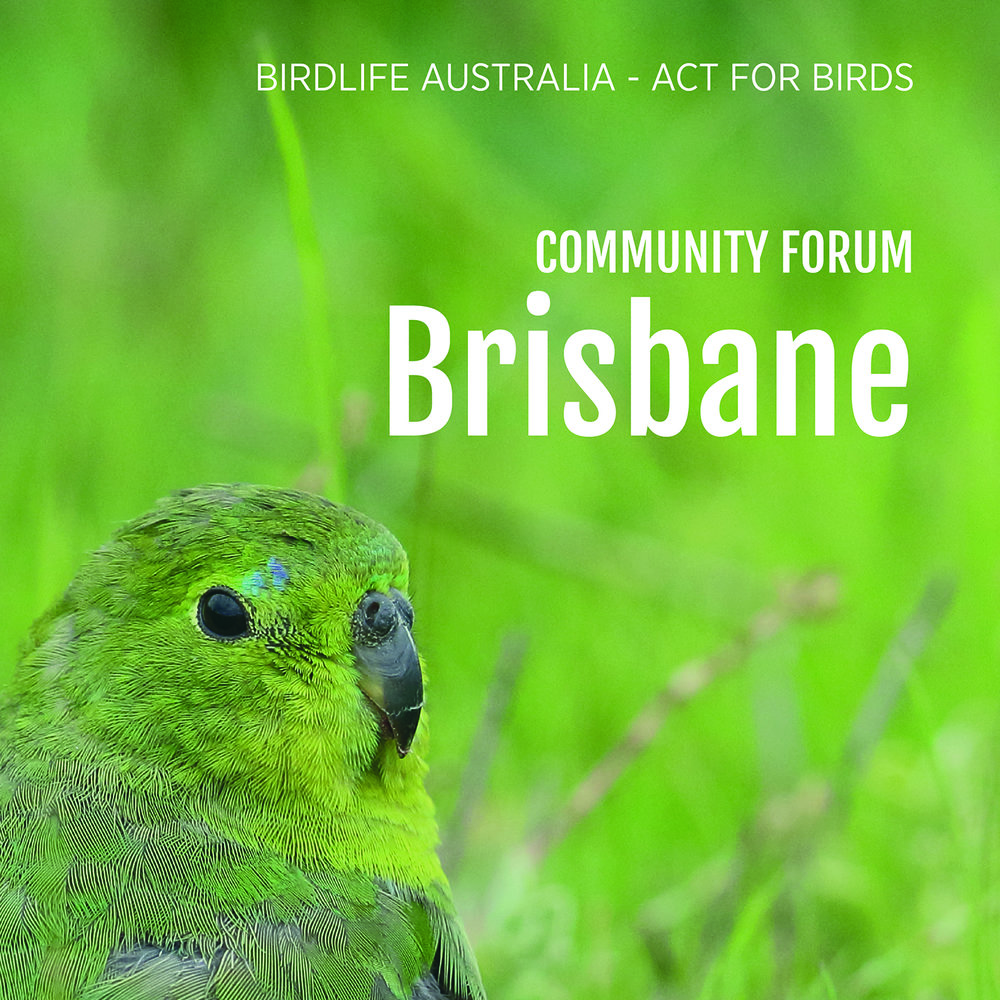 Community forum - Brisbane.jpg