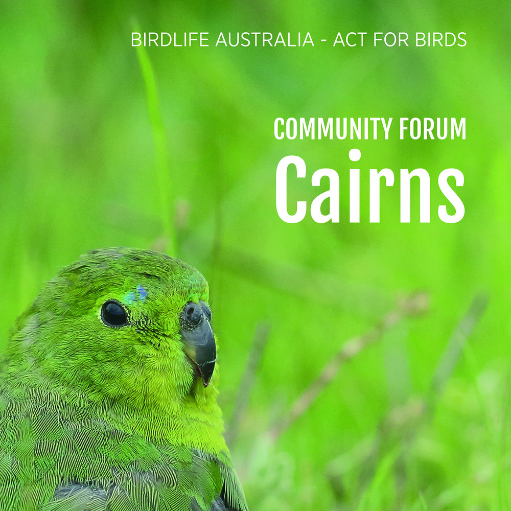 Community forum - Cairns.jpg