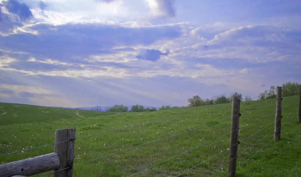 sunset_Farm 010.jpg