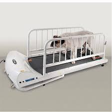GoPet Dog Treadmill.jpg