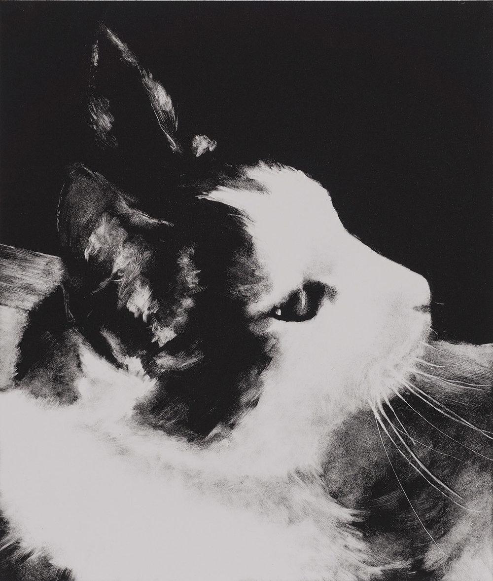 Kathryn Lesh,  Moon , monotype print.