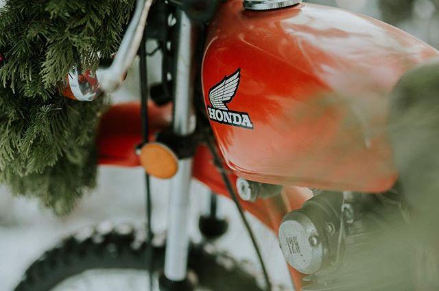 A little peek from the Christmas Honda pictures I took today ! - - - - - #hondatrail #hondamotorcylce #vintagehondamotorcycle #honda #hondalife #girlswhoride #juliedorge.motorsports.photo #lovetoride #bikelife #bikesofinstagram #lifeontwowheels #motorbike #motorcyclesofinstagram #motorcyclelifestyle #oldmotorcycle #ilovemylife  #exploremore #thehappynow #makemoments #chasinglight #theoutbound #keepitwild #hellobc #explorebc #vintagechristmas #canonphotography #merrychristmas #merryandbright
