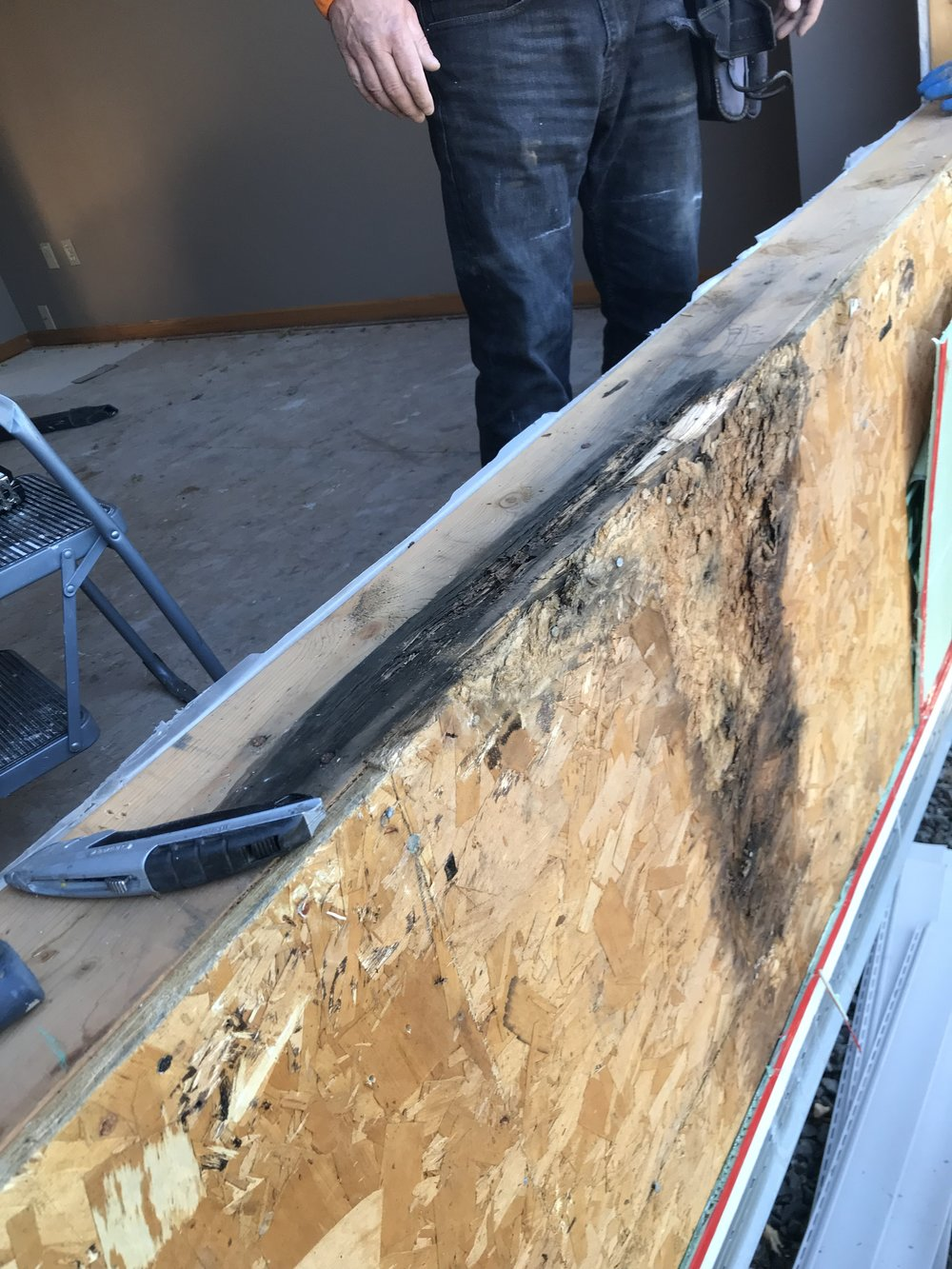 Water penetration due to improper installation can lead to rot and mold.  -