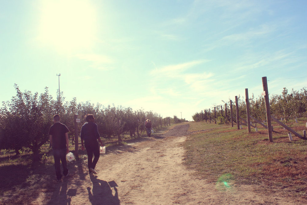 october apple picking